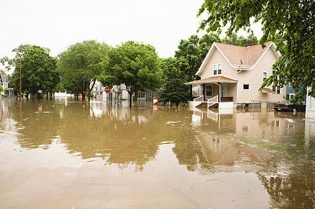 Flood_13_2.jpg